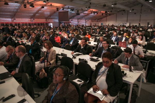 CMA - Conference of the Parties serving as the meeting of the Parties to the Paris Agreement - held its first plenary meeting (CMA1) at COP22. Photo by IISD/ENB | Kiara Worth